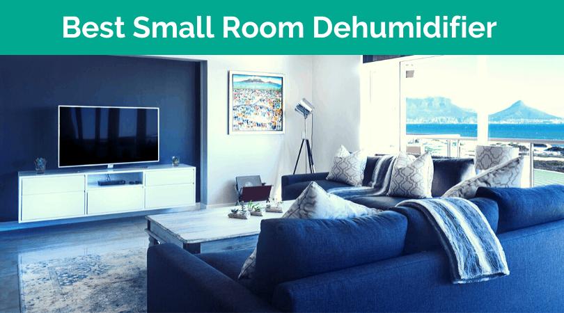 Best Small Dehumidifier