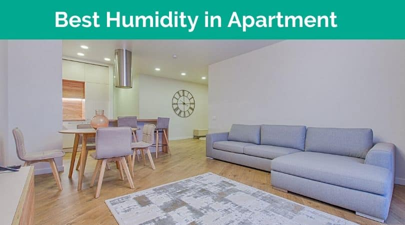 Humidity in Apartment